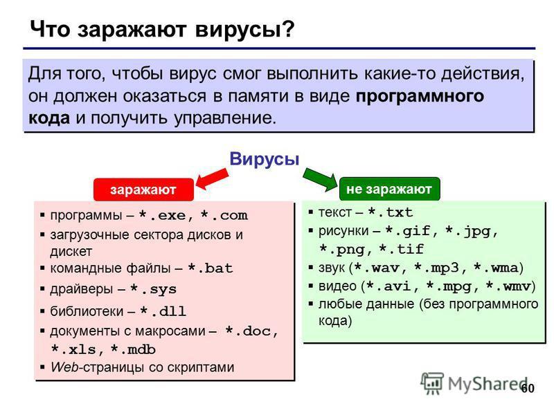 60 Что заражают вирусы? Вирусы программы – *. exe, *. com загрузочные сектора дисков и дискет командные файлы – *.bat драйверы – *. sys библиотеки – *. dll документы с макросами – *.doc, *.xls, *.mdb Web-страницы со скриптами программы – *. exe, *. c