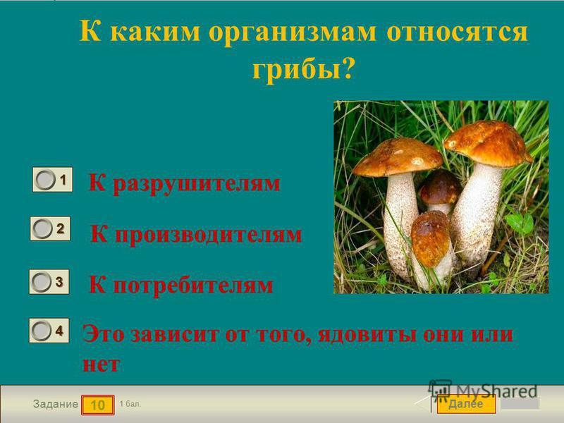Далее 10 Задание 1 бал. 1111 2222 3333 4444 К каким организмам относятся грибы? К разрушителям К производителям К потребителям Это зависит от того, ядовиты они или нет