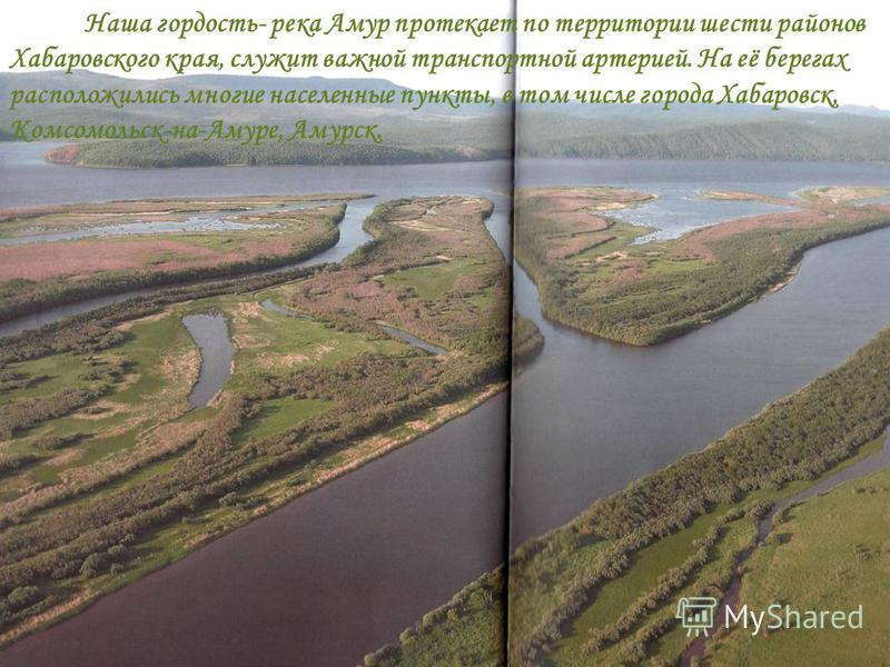 Наша гордость- река Амур протекает по территории шести районов Хабаровского края, служит важной транспортной артерией. На её берегах расположились многие населенные пункты, в том числе города Хабаровск, Комсомольск-на-Амуре, Амурск.