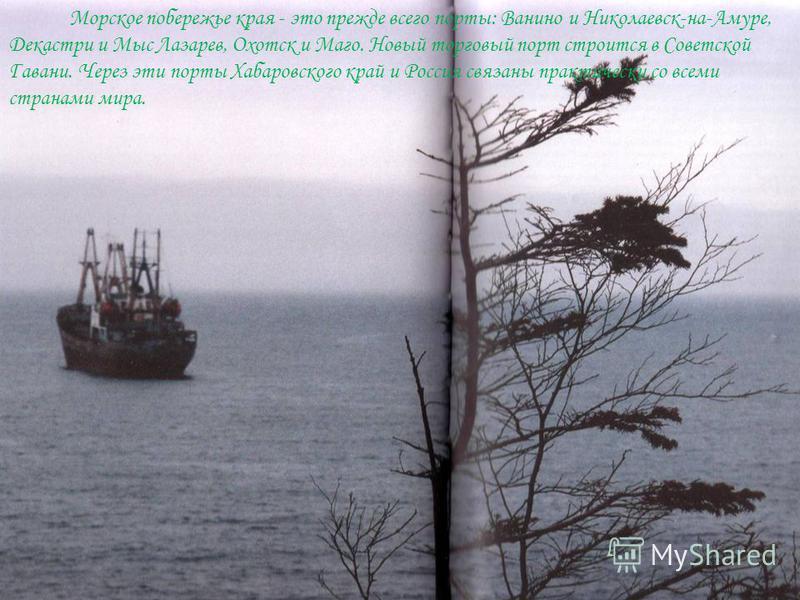Морское побережье края - это прежде всего порты: Ванино и Николаевск-на-Амуре, Декастри и Мыс Лазарев, Охотск и Маго. Новый торговый порт строится в Советской Гавани. Через эти порты Хабаровского край и Россия связаны практически со всеми странами ми