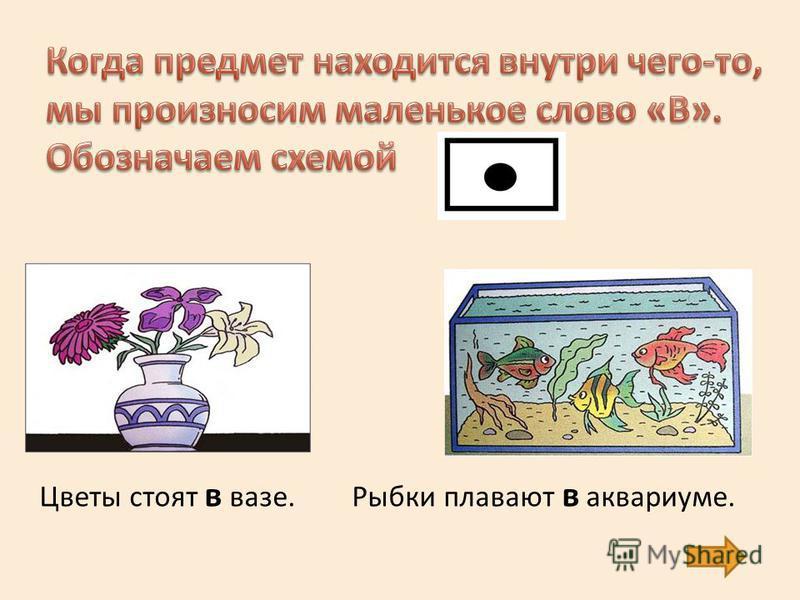 Цветы стоят в вазе.Рыбки плавают в аквариуме.