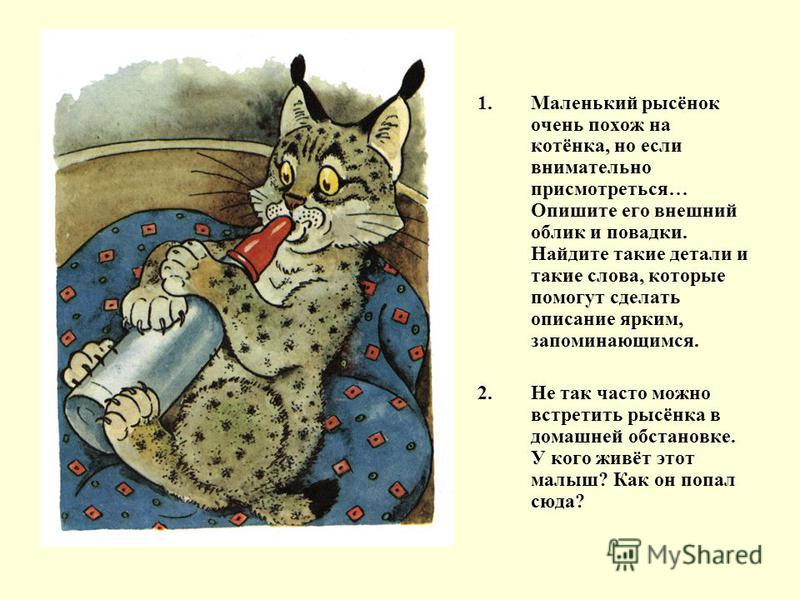 1. Маленький рысёнок очень похож на котёнка, но если внимательно присмотреться… Опишите его внешний облик и повадки. Найдите такие детали и такие слова, которые помогут сделать описание ярким, запоминающимся. 2. Не так часто можно встретить рысёнка в