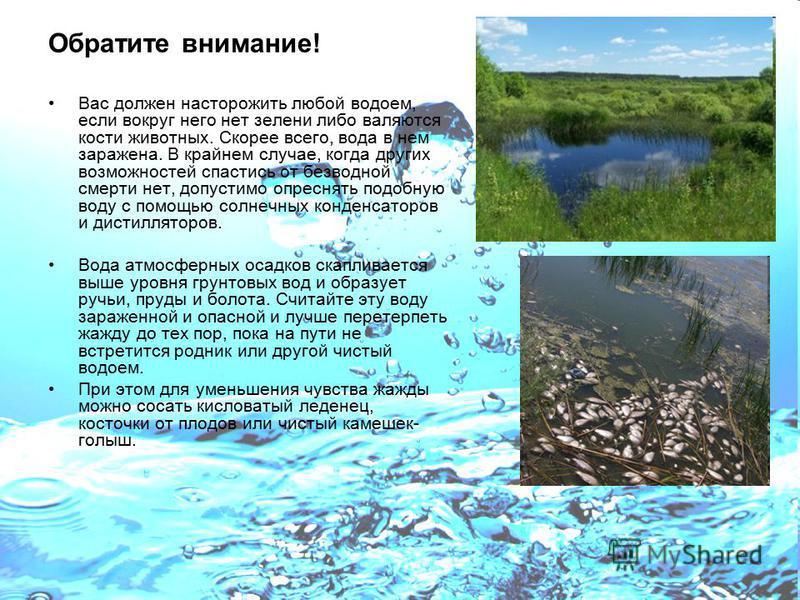 Обратите внимание! Вас должен насторожить любой водоем, если вокруг него нет зелени либо валяются кости животных. Скорее всего, вода в нем заражена. В крайнем случае, когда других возможностей спастись от безводной смерти нет, допустимо опреснять под