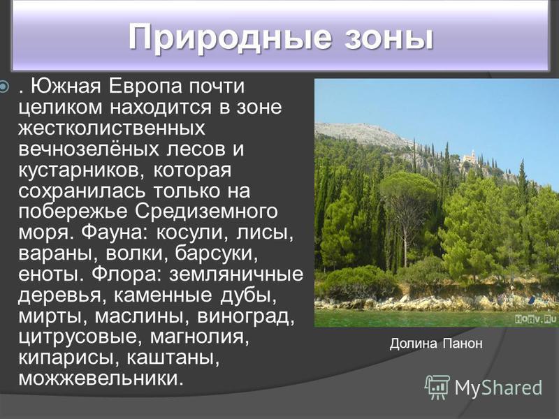 Природные зоны. Южная Европа почти целиком находится в зоне жестколиственных вечнозелёных лесов и кустарников, которая сохранилась только на побережье Средиземного моря. Фауна: косули, лисы, вараны, волки, барсуки, еноты. Флора: земляничные деревья,