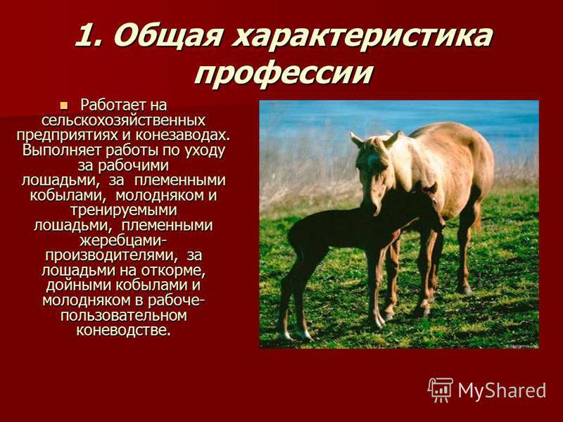 1. Общая характеристика профессии Работает на сельскохозяйственных предприятиях и конезаводах. Выполняет работы по уходу за рабочими лошадьми, за племенными кобылами, молодняком и тренируемыми лошадьми, племенными жеребцами- производителями, за лошад