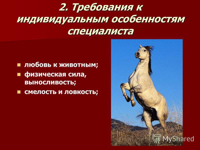 2. Требования к индивидуальным особенностям специалиста любовь к животным; физическая сила, выносливость; смелость и ловкость;