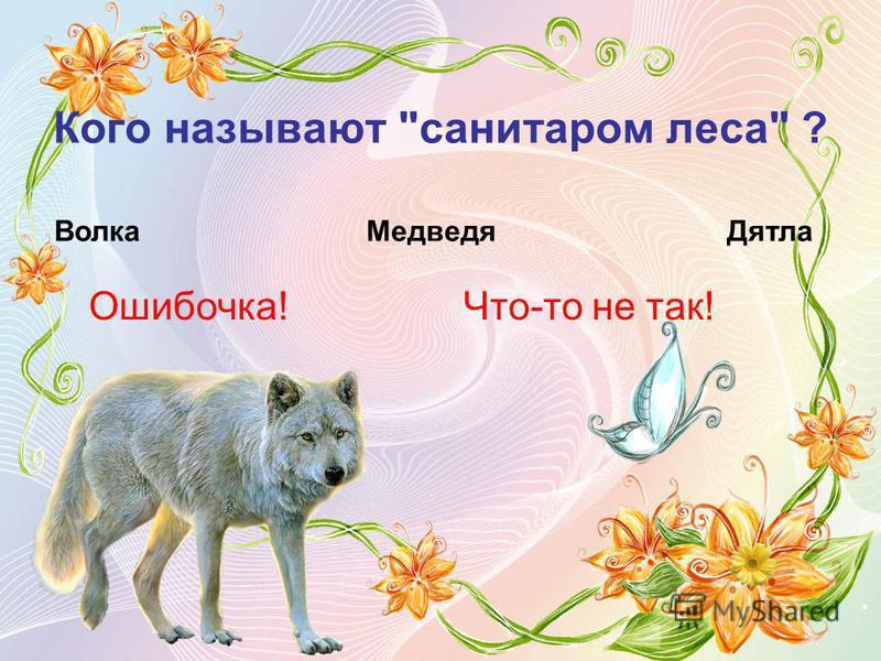 Кого называют санитаром леса ? Волка Ошибочка! Медведя Дятла Что-то не так!