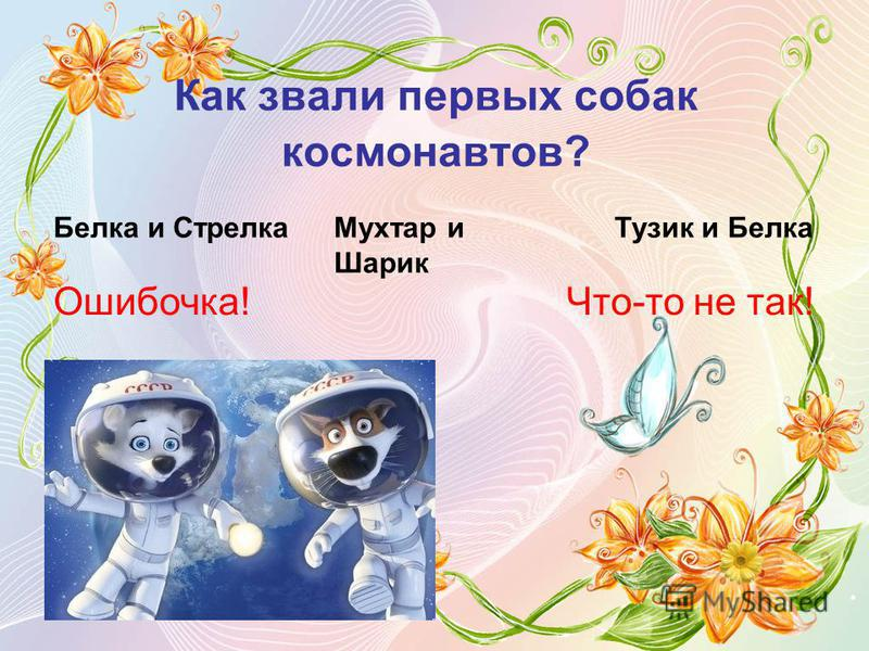 Как звали первых собак космонавтов? Белка и Стрелка Мухтар и Шарик Тузик и Белка Ошибочка!Что-то не так!