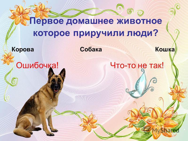 Первое домашнее животное которое приручили люди? Корова Собака Кошка Ошибочка!Что-то не так!