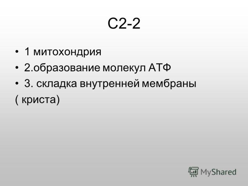 С2-2 1 митохондрия 2. образование молекул АТФ 3. складка внутренней мембраны ( криста)