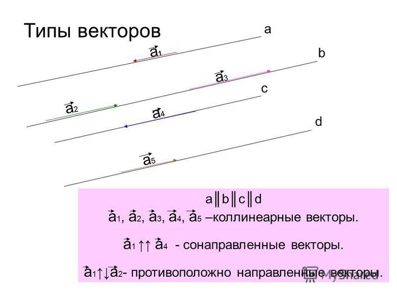 Типы векторов а b c d а 1 а 1 a2a2 a3a3 a4a4 a5a5 abcd a 1, a 2, a 3, a 4, a 5 –коллинеарные векторы. a 1 a 4 - сонаправленные векторы. a 1 a 2 - противоположно направленные векторы.