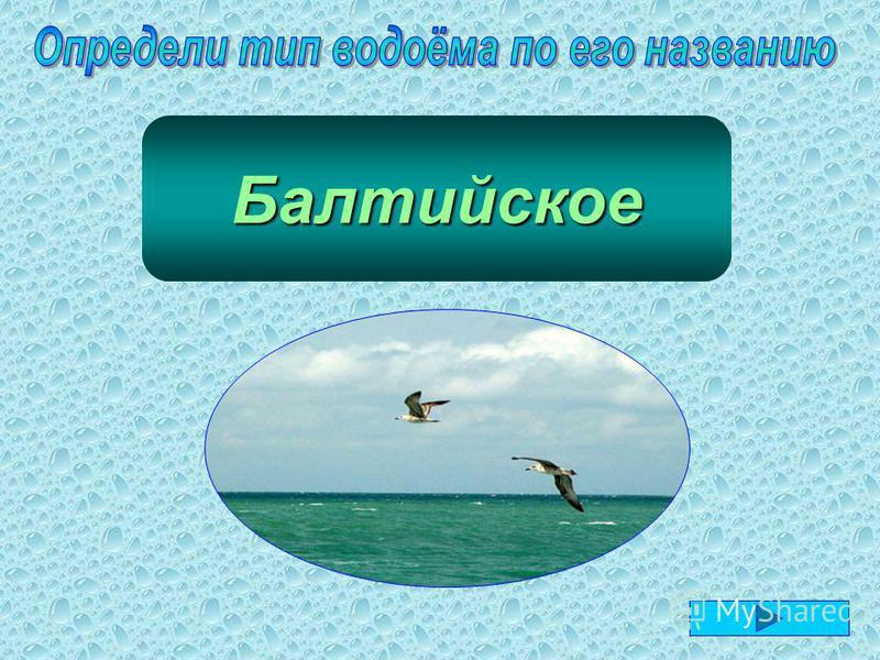 море Балтийское