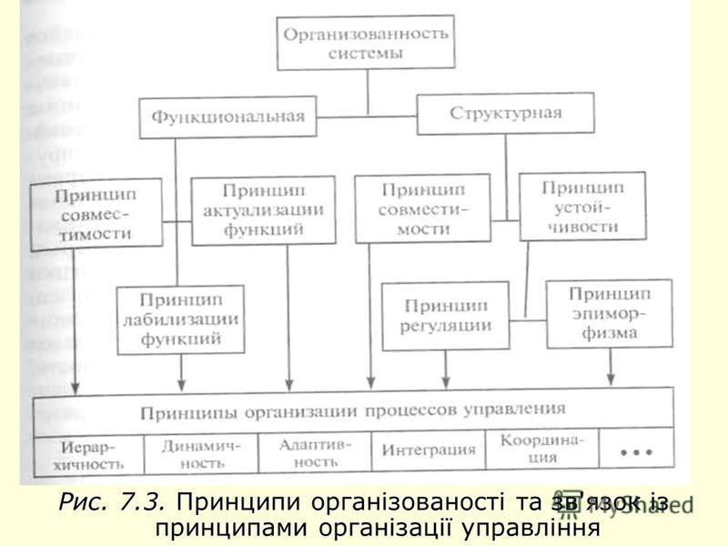Рис. 7.3. Принципи організованості та зв'язок із принципами організації управління