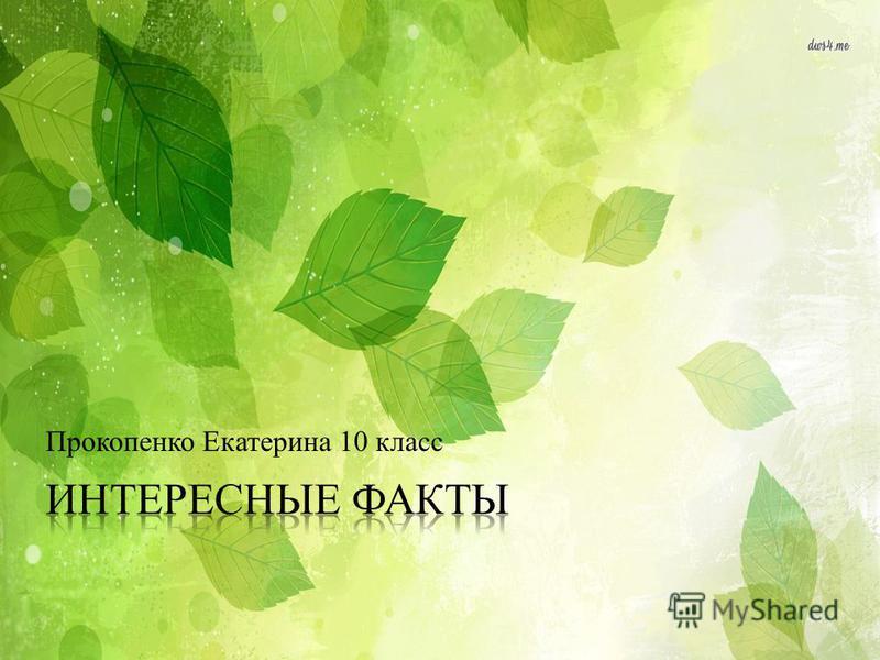 Прокопенко Екатерина 10 класс