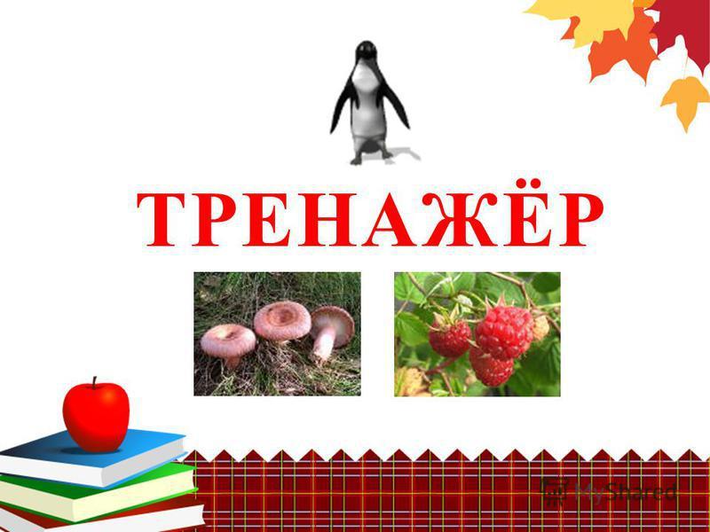 ТРЕНАЖЁР