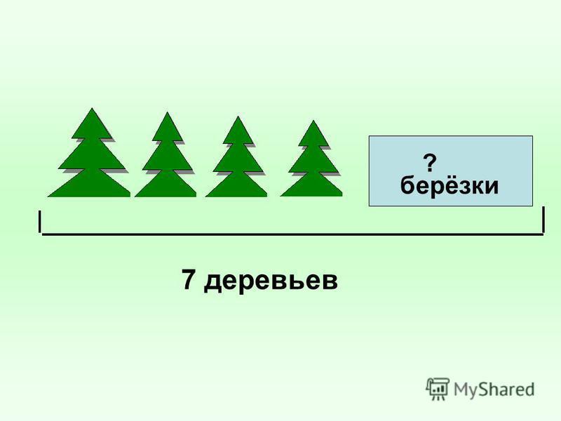 берёзки ? 7 деревьев