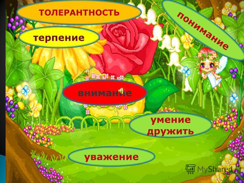 терпение внимание умение дружить уважение понимание ТОЛЕРАНТНОСТЬ