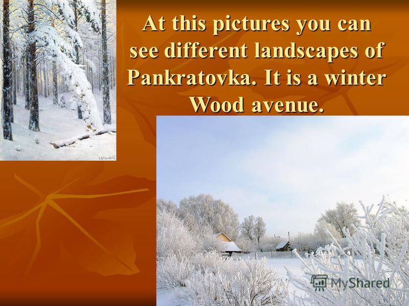 At this pictures you can see different landscapes of Pankratovka. It is a winter Wood avenue.