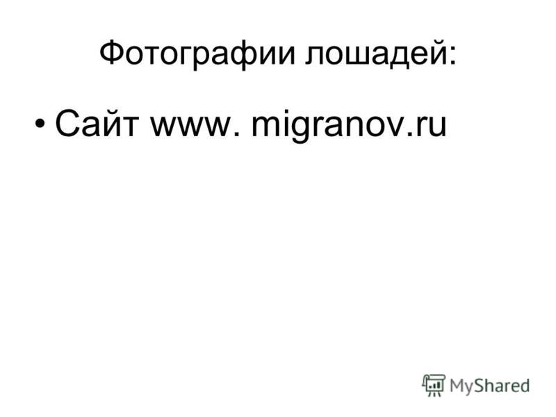 Фотографии лошадей: Сайт www. migranov.ru