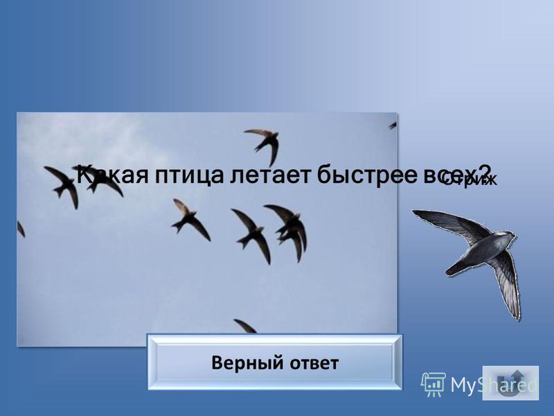 12345678 910111213141516 1718192021222324 Литература