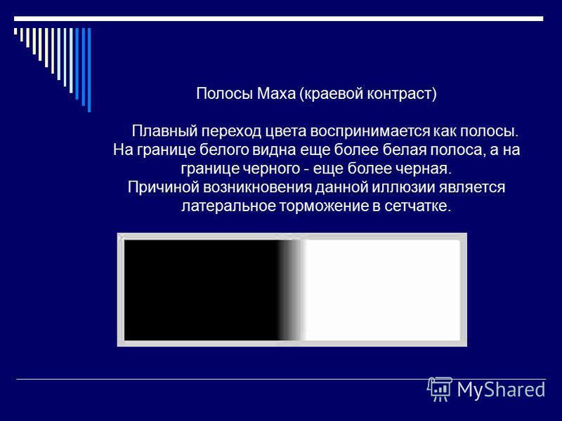 Полосы Маха (краевой контраст) Плавный переход цвета воспринимается как полосы. На границе белого видна еще более белая полоса, а на границе черного - еще более черная. Причиной возникновения данной иллюзии является латеральное торможение в сетчатке.