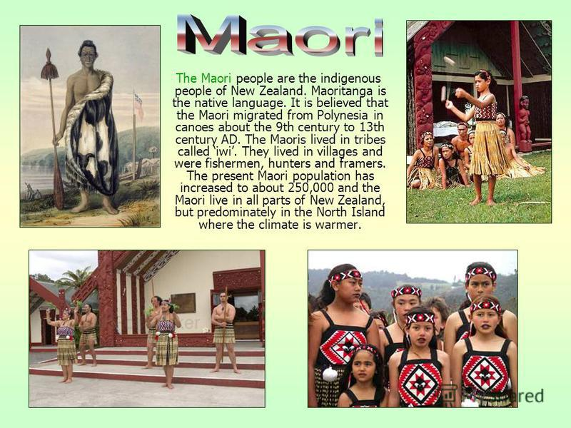 The Maori people are the indigenous people of New Zealand. Maoritanga is the native language. It is believed that the Maori migrated from Polynesia in canoes about the 9th century to 13th century AD. The Maoris lived in tribes called iwi. They lived