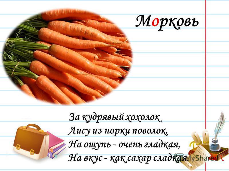 Морковь За кудрявый хохолок Лису из норки поволок. На ощупь - очень гладкая, На вкус - как сахар сладкая.