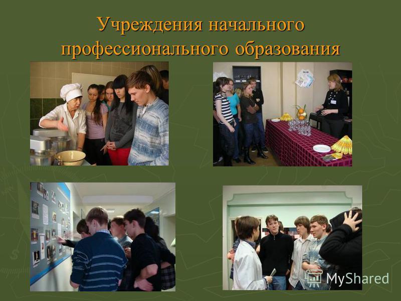 Учреждения начального профессионального образования