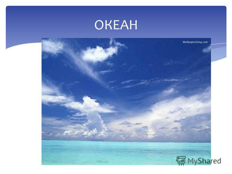 ЗАГАЛЬНА ПЛОЩА ОКЕАНУ Континенральний шельфМатериковий схил Океанічна область