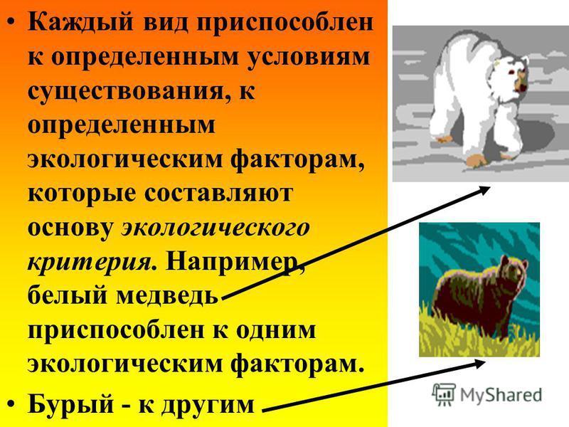 Каждый вид приспособлен к определенным условиям существования, к определенным экологическим факторам, которые составляют основу экологического критерия. Например, белый медведь приспособлен к одним экологическим факторам. Бурый - к другим