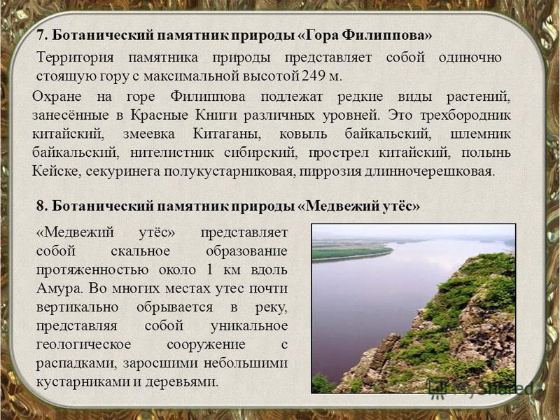 7. Ботанический памятник природы «Гора Филиппова» Территория памятника природы представляет собой одиночно стоящую гору с максимальной высотой 249 м. Охране на горе Филиппова подлежат редкие виды растений, занесённые в Красные Книги различных уровней