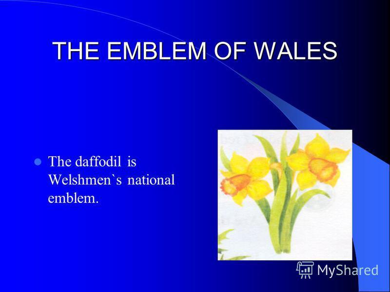 THE EMBLEM OF WALES The daffodil is Welshmen`s national emblem.