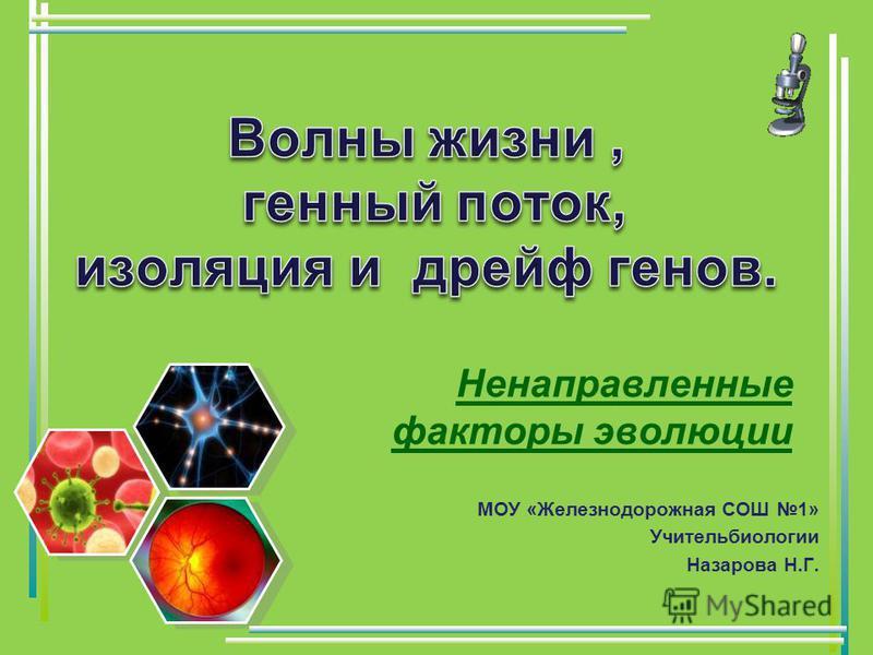 Ненаправленные факторы эволюции МОУ «Железнодорожная СОШ 1» Учительбиологии Назарова Н.Г.
