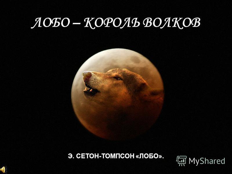 ЛОБО – КОРОЛЬ ВОЛКОВ Э. СЕТОН-ТОМПСОН «ЛОБО».