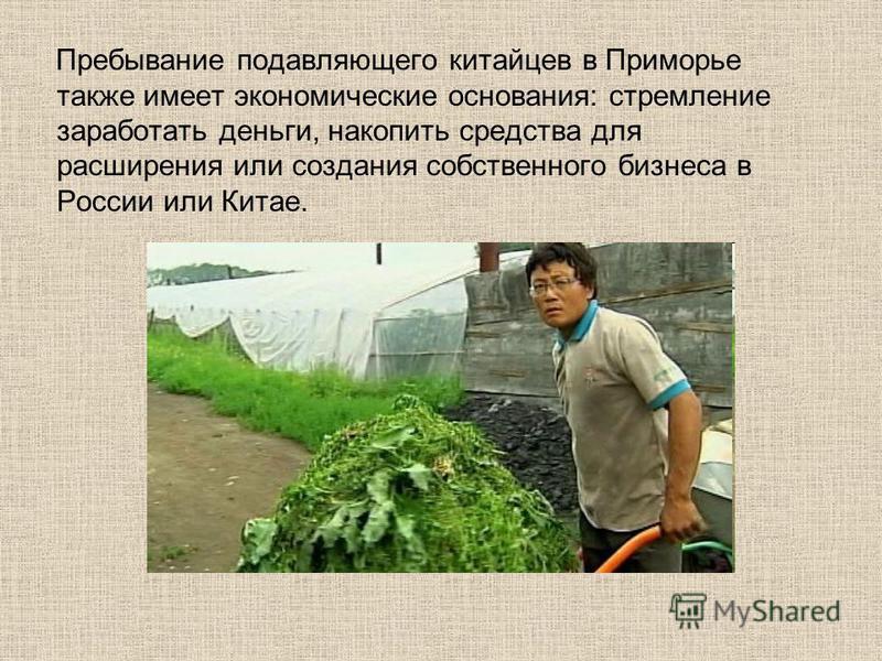Пребывание подавляющего китайцев в Приморье также имеет экономические основания: стремление заработать деньги, накопить средства для расширения или создания собственного бизнеса в России или Китае.