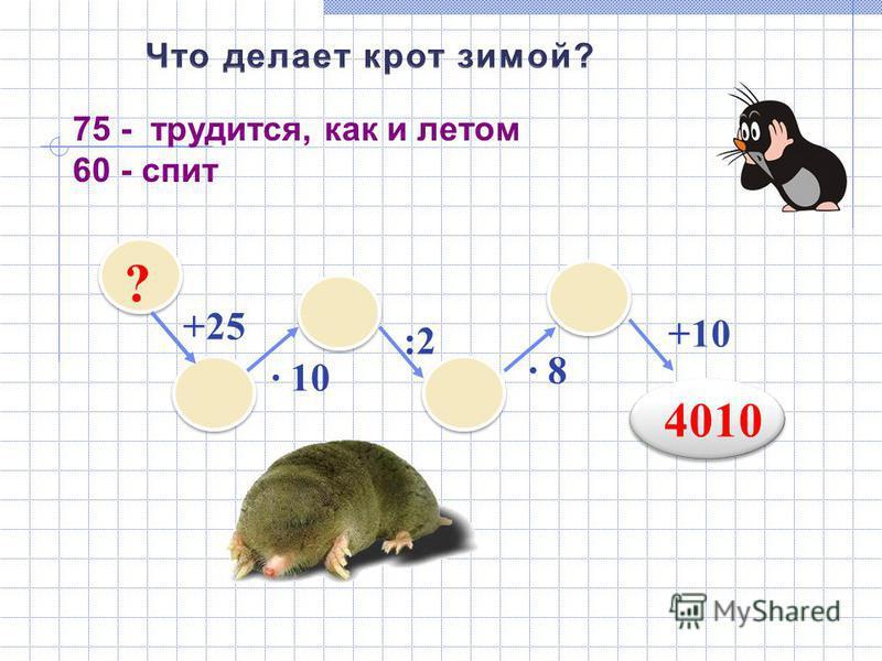 +25 ? · 10 :2 · 8 +10 4010 75 - трудится, как и летом 60 - спит