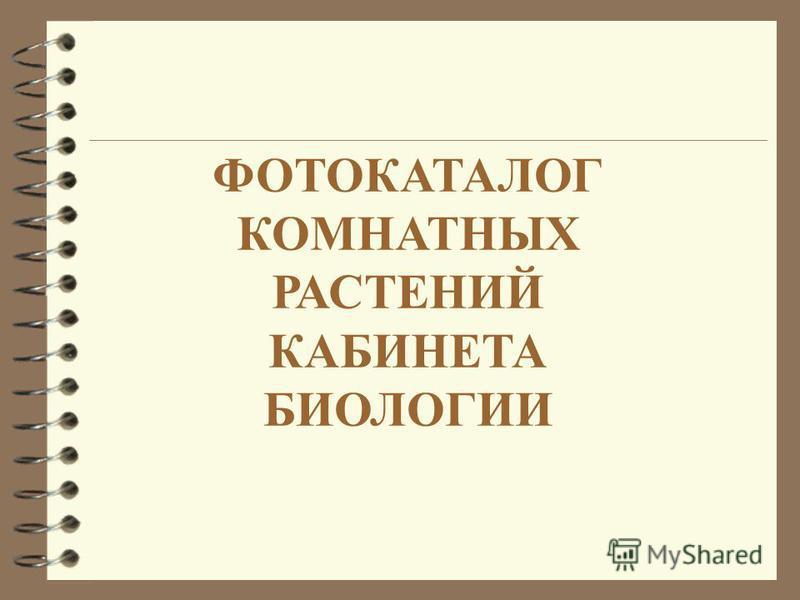 ФОТОКАТАЛОГ КОМНАТНЫХ РАСТЕНИЙ КАБИНЕТА БИОЛОГИИ