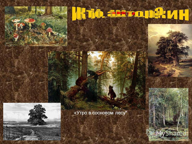 «Утро в сосновом лесу
