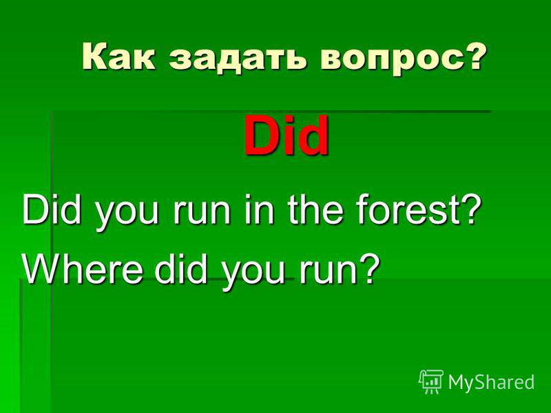 Как задать вопрос? Did you run in the forest? Where did you run? Did