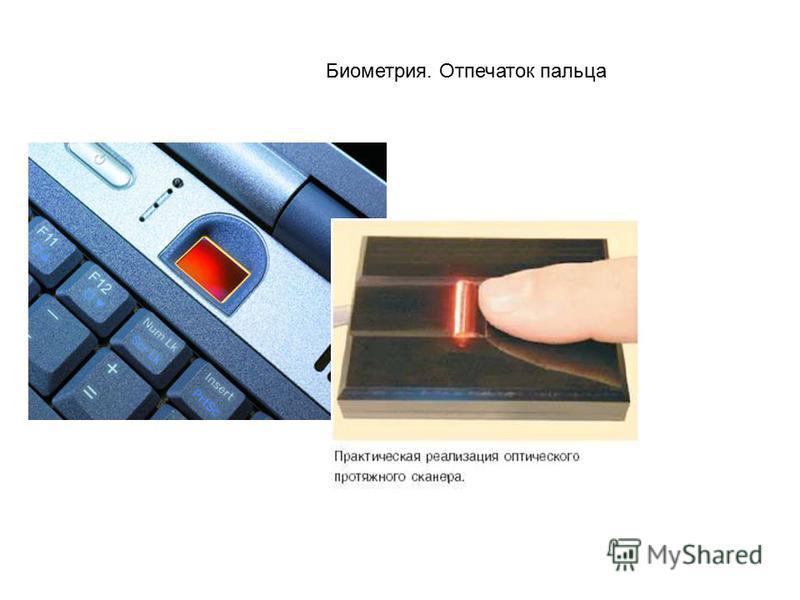 Биометрия. Отпечаток пальца