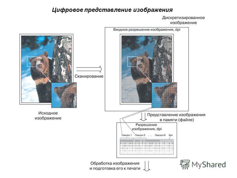 Цифровое представление изображения