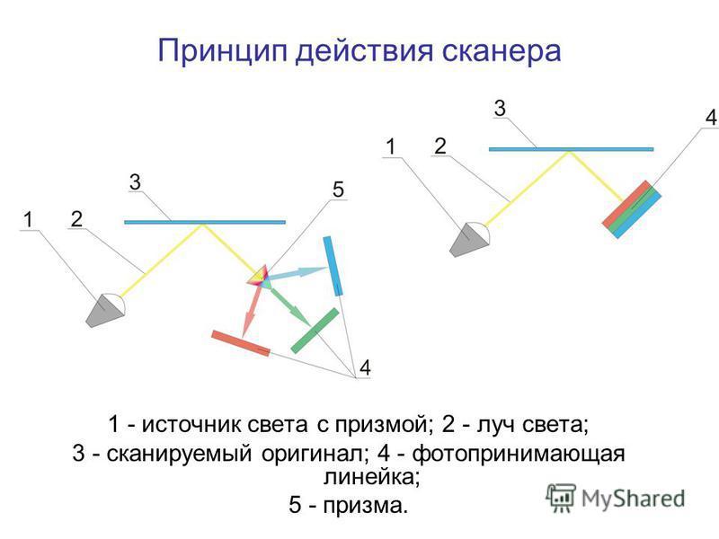1 - источник света с призмой; 2 - луч света; 3 - сканируемый оригинал; 4 - фото принимающая линейка; 5 - призма. Принцип действия сканера