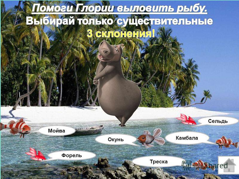 Окунь Камбала Ставрида Лосось Карп Скумбрия Продолжить