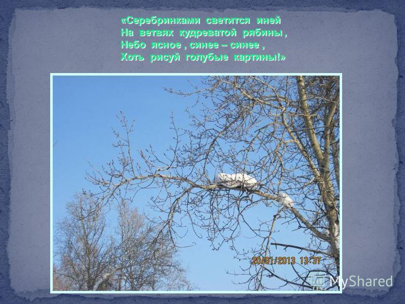 «Серебринками светится иней На ветвях кудреватой рябины, Небо ясное, синее – синее, Хоть рисуй голубые картины!»