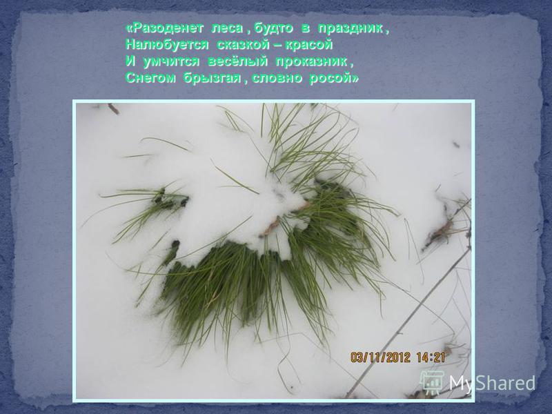 «Разоденет леса, будто в праздник, Налюбуется сказкой – красой И умчится весёлый проказник, Снегом брызгая, словно росой»