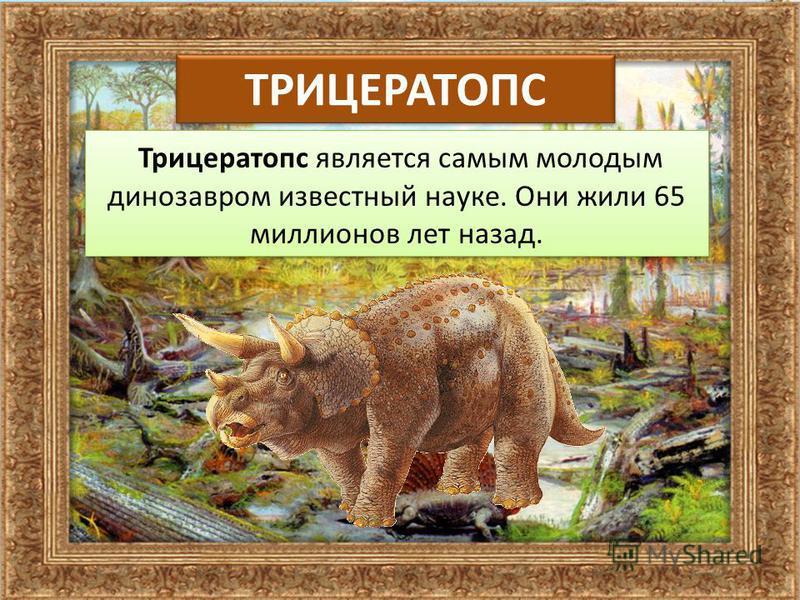 ТРИЦЕРАТОПС Трицератопс является самым молодым динозавром известный науке. Они жили 65 миллионов лет назад.
