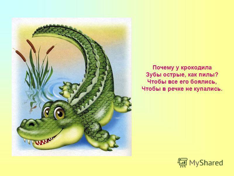 Почему у крокодила Зубы острые, как пилы? Чтобы все его боялись, Чтобы в речке не купались.