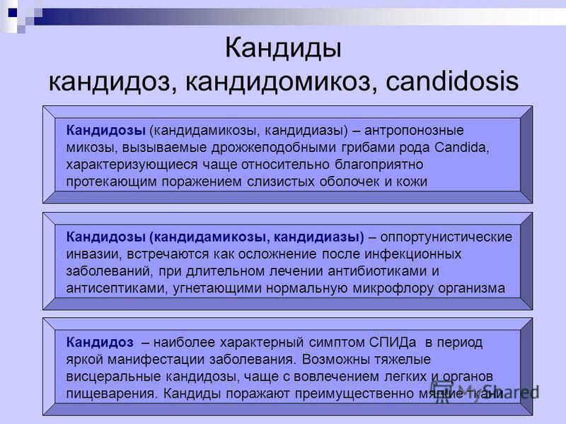 Кандиды кандидоз, кандидомикоз, candidosis Кандидозы (кандидамикозы, кандидозы) – антропонозные микозы, вызываемые дрожжеподобными грибами рода Candida, характеризующиеся чаще относительно благоприятно протекающим поражением слизистых оболочек и кожи