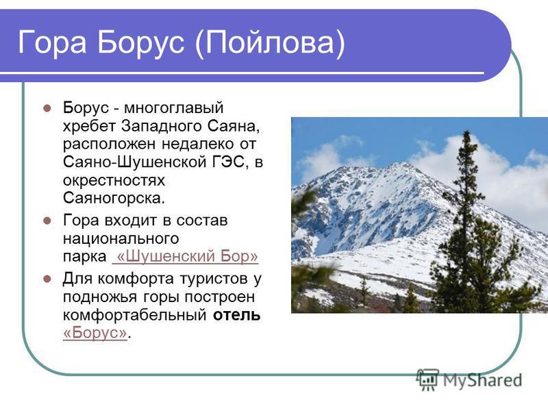 Гора Борус (Пойлова) Борус - многоглавый хребет Западного Саяна, расположен недалеко от Саяно-Шушенской ГЭС, в окрестностях Саяногорска. Гора входит в состав национального парка «Шушенский Бор» «Шушенский Бор» Для комфорта туристов у подножья горы по