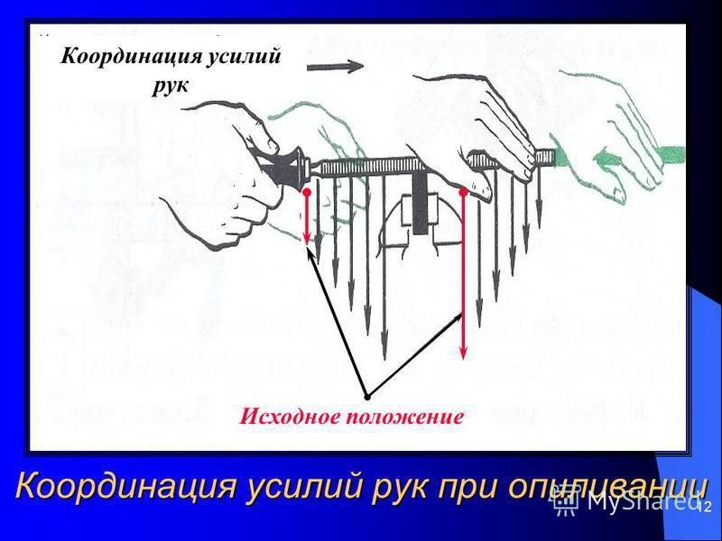 12 Координация усилий рук при опиливании Координация усилий рук Исходное положение